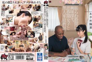 ดูหนังโป๊24Ishimura Kotoha โลลิขี้หม้อล่อซื้อของดำ DASD-619 tag_star_name: <span>Ishimura Kotoha</span>