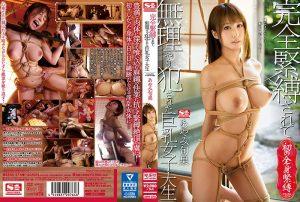 ดูหนังโป๊24SSNI-276 Shunka Ayami เชลยสวาทบรรณาธิการสาว tag_star_name: <span>Shunka Ayami</span>